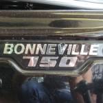 Triumph Bonneville tank logo